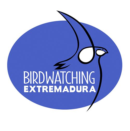 Birdwatching#2